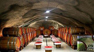 Kolasin Conference - Plantaze Wine Cellar Sipcanik