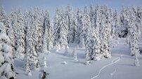 Montenegro Winter Spots Mountain slopes